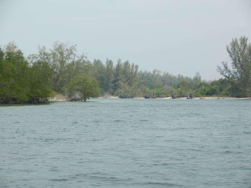 ....durch Mangrovenkanäle geht es in Richtung offenes Meer