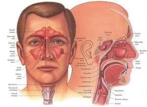 Sinuzit